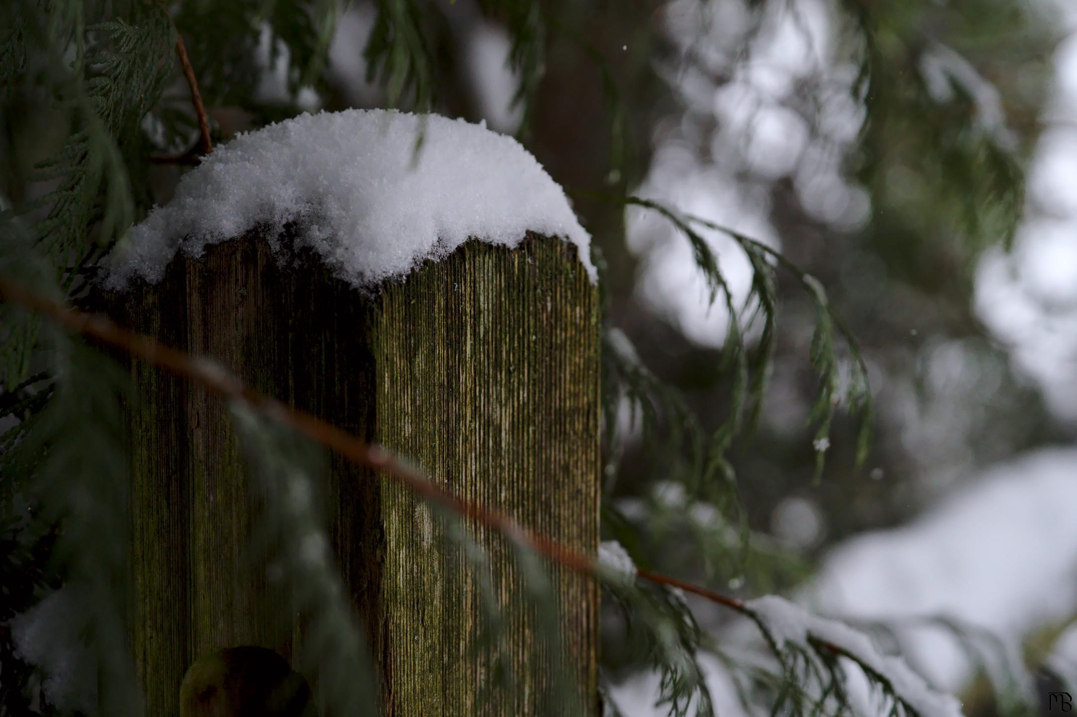 Wooden fence post with falling snow